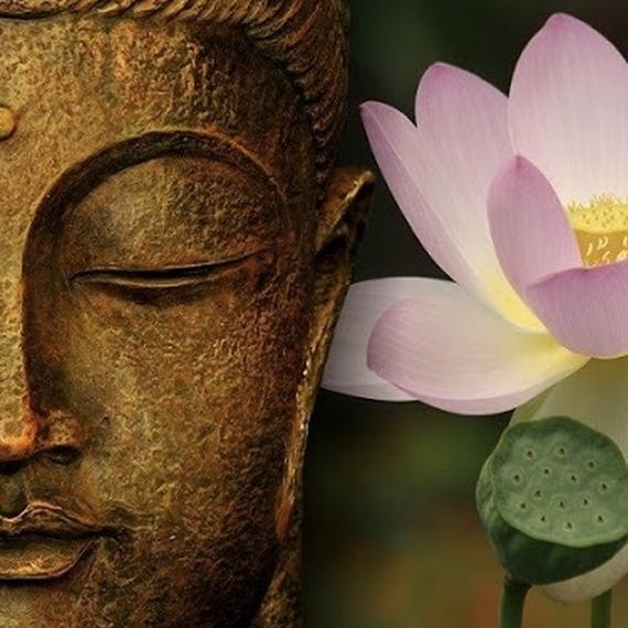 enocha for karuna : ateliers, méditations, soins